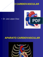 aparato-cardiovascular1-1198308560446935-5 (1)