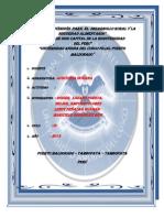 Norma de Control Interno - Auditoria