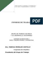 Informe Grupo de Trabajo de Pesca Del Congreso