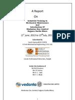 Printout Final Report (HZL)