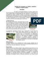 BIODIVERSIDAD de Las Bahias Ferrol Samanco