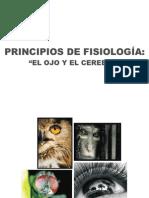 Principios de Fisiologia-ojo Cerebro