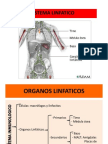 Clase 14-15. Sistema Linfatico.2012