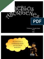 34247990-Presentacion1-pueblos-originarios.pdf