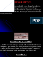 13919620 Choque Septico Neurogenico e Hemorragico (1)