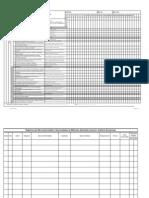 Formulário de Auditoria Escalonada