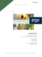 130718_Informe Mensual Estimaciones - Jul-2013