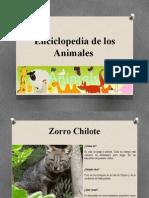 Gran Enciclopedia de Los Animales