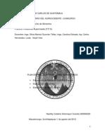 PLAN DE PRACTICAS PPS.docx