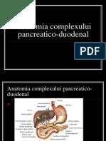 Anatomia Complexului Pancreatico-duodenal
