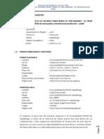 Perfil Completo Av. Ricardo Palma.docx