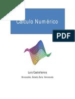 Cc3a1lculo Numc3a9rico Luis Castellanos