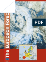 Euro Forecaster 2008 newsletter wgcef