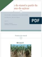 Seminário de biomassa.pptx