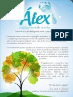 Superandounaborto Folleto Imprimir Fundacion Alex Paginas