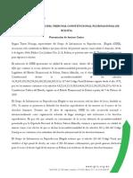 Amicus Curiae ante el Tribunal Constitucional  Plurinacional de Bolivia