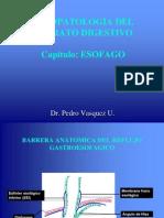 Fisiopatologia digestivo