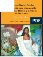 Consejo Tecnico Escolar (guía)