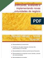 Capítulo 7 Identificando, avaliando e implementando novas oportunidades de negocios
