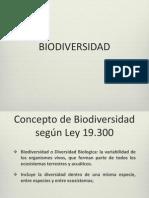 E_Biodiversidad 2013