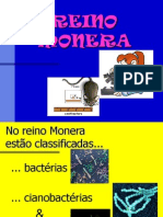 02 - ReinoMonera EF