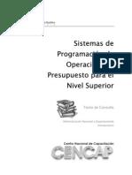 Sistemas Programación de Operaciones y Presupuestos
