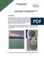 Informe Cianofitas Lago Coatepeque 18SEPT12 Vf-1