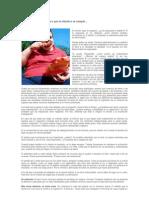 Quieres Adelgazar - Motivacion Para Obesos