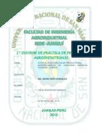 1º INFORME DE PRACTICA DE PROYECTOS AGROINDUSTRIALES