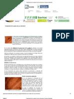 Tratamiento de La Madera de Uso Estructural _ Higiene Ambiental