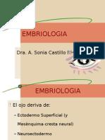 Embriologia Del Ojo -> Futura  Médica
