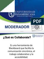 Collaborate Moderador(1)