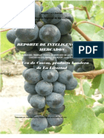 Informe de Inteligencia de Mercado Uva_2010