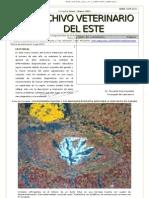Archivo Veterinario Del Este - 1T_2011