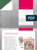 hipotalamo-120512122209-phpapp01.pptx
