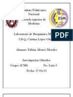 INVESTIGACION GLUCIDOS.docx