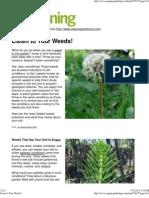 Listen to Your Weeds!