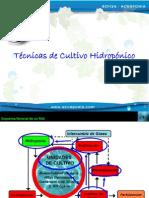 08 Técnicas de Hidroponia