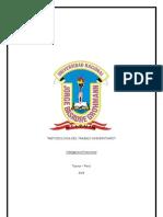 UNIVERSIDAD NACIONAL JORGE BASADRE GROHOMANN Caratula 2.docx