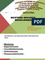 MICETOMA NOCARDIS BRAZILENSES.
