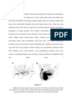 Patofisiologi striktur