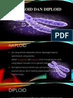 Haploid Dan Diploid