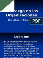 Liderazgo en Las Organizaciones