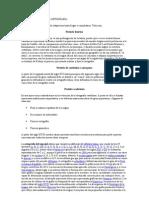 EL ORIGEN DE NUESTRA ORTOGRAFÍA.doc