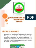 COPASO 1