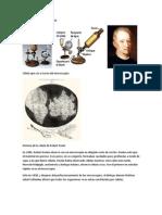 Microscopio de Robert Hook