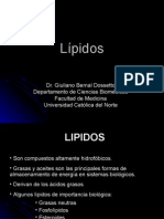 Procesos Biologicos - 06 - Lipidos.03.04.09