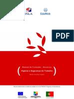 Manual_Formador_HST.pdf