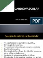 Aula 1 - Sistema Cardiovascular