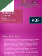 PLAN DE GESTIÓN DEL CUIDADO.pptx